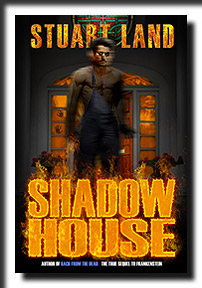 Shadow House by Stuart Land